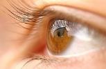 Idegi őssejtekkel gyógyítanák az időskori látásromlást