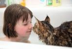 Elválaszthatatlanok: Grace, az autista kislány és a cicája