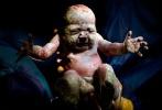 Születés – az anyaméhből a külvilágba… Fotók!