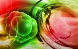 Oxigénhiányos csecsemőkön is segíthetnek az őssejtek