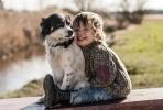 Egy anyuka fotói kisfiáról és örökbefogadott kutyáiról