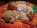 Gyerekek és háziállatok – 23 csodás fotó